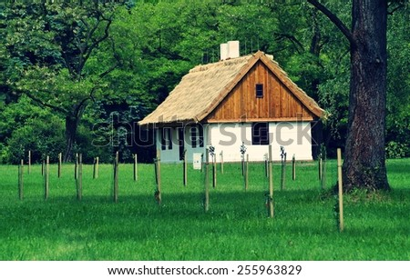 Old wooden house with straw roof , vintage photo - stock photo