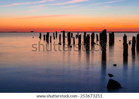 Old wooden pier and bird on stone in harbor at sunset