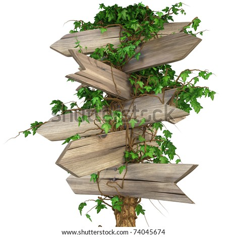 old wooden pointer overgrown in ivy. isolated on white. including clipping path - stock photo