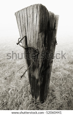 Old wooden pole isolated on a dry meadow