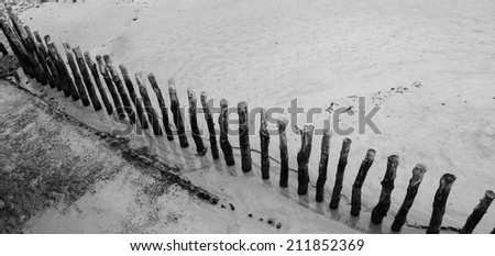 Old  wooden poles during low tide at Saint-Malo beach, Brittany, France. Top view. Aged photo. Black and white. - stock photo
