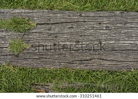 Old wooden sheets on grass, use as background.