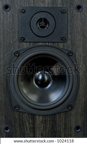 Old wooden speaker - stock photo