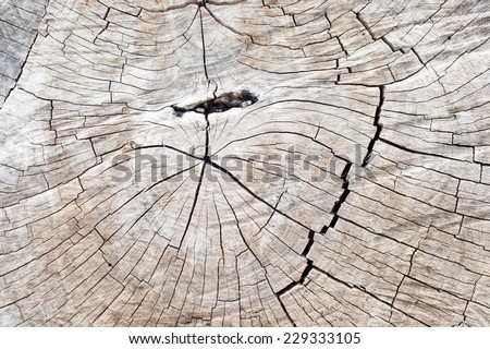 Old wooden structure for a background. - stock photo
