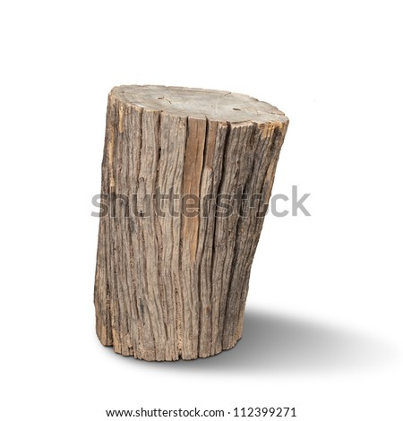 Old wooden stump - stock photo