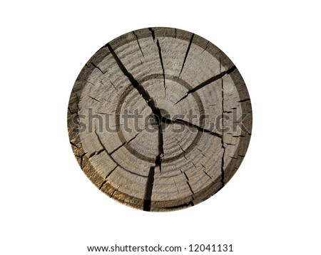 Old wooden target - stock photo