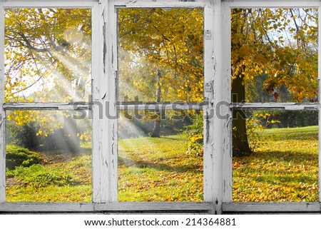 old Wooden window overlook autumn trees - stock photo