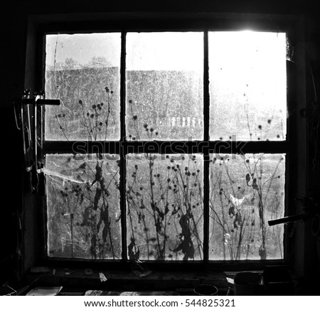 Old workshop window with spiderwebs suspended in which the sun shines