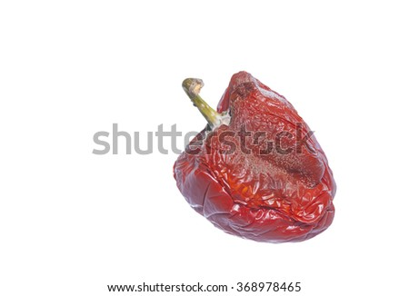 old wrinkled red bell pepper or Capsicum fruit with green stalk isolated on white, vegetable wastage
