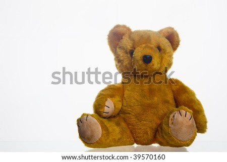 Old yellow teddy bear on white background - stock photo