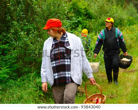 Older women and men gather mushrooms in the forest - stock photo