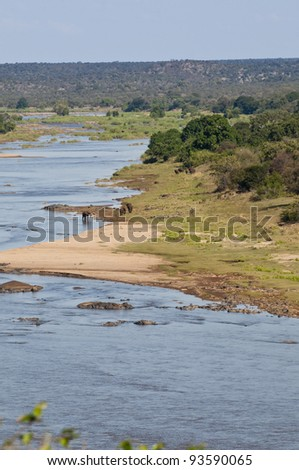 Olifants river in South Africa with elephants - stock photo