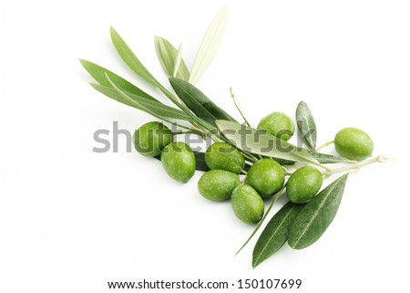 Olive branch and green olives 2