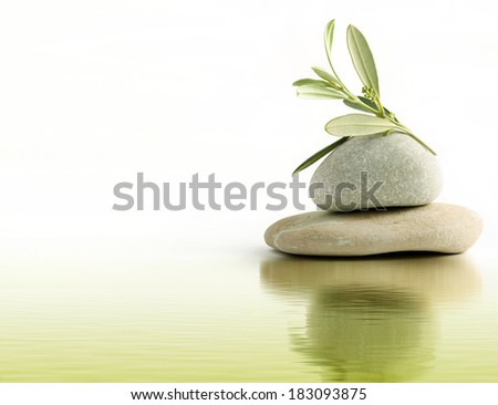 Olive branch on stone pebbles and water reflection - stock photo