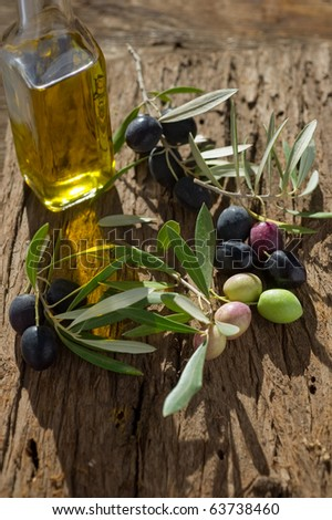 olive branch with oil - stock photo