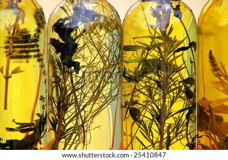 olive oil - stock photo