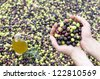 Olive oil and olives in hand - stock photo