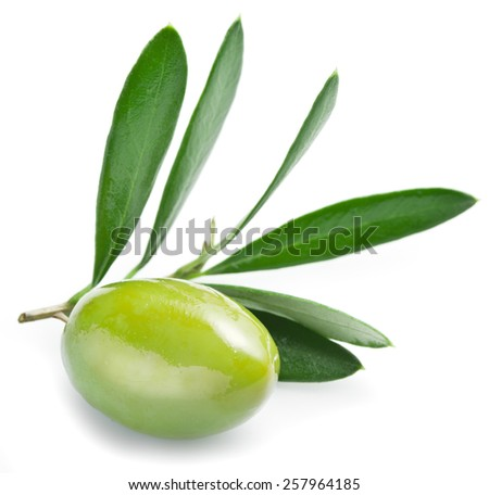 Olive with leaves on a white background. - stock photo