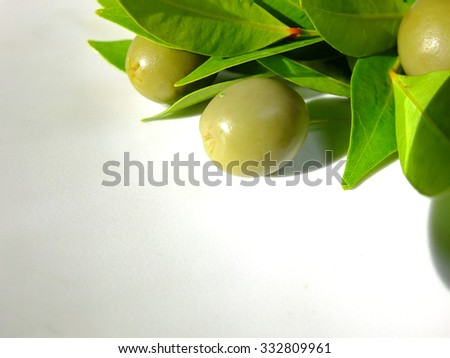 Olives and leaves on white background.