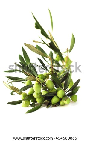 Olives on branch with leaves isolated on white background