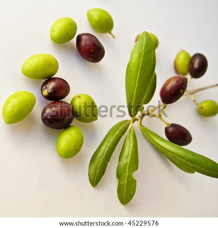 Olives with great colors in white background