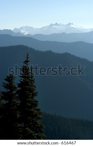 Olympic National Park, WA - stock photo