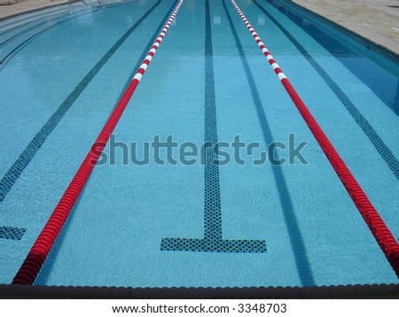 olympic swimming pool with competition lanes - Olympic Swimming Pool Lanes