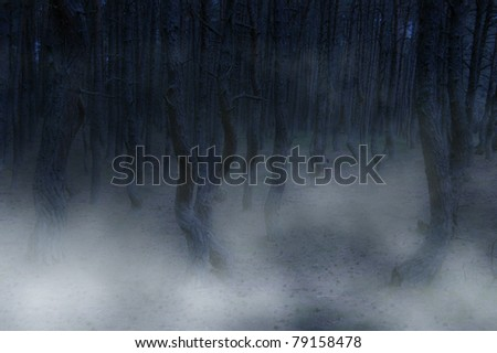 ominous forest - twisted trees and fog creating creepy landscape - stock photo