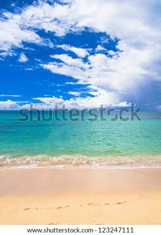 On a Beach White Sand