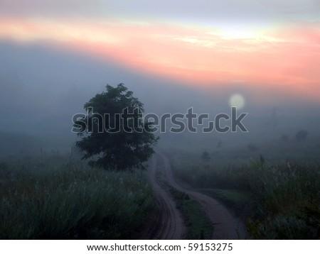 on a foggy morning landscape - stock photo