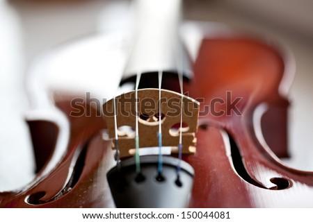 On a photo violin close up photos - stock photo