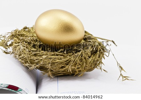 On an open ledger, a gold nest egg sits in sparkling gold nest; selective focus on nest egg; - stock photo