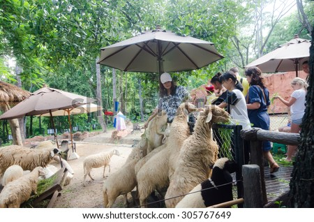 On August 12, 2015,in a zoo in Chiang mai, tourists can not identify the name and nationality, sheep gathering around snatching food from the hands of both female and male children  - stock photo