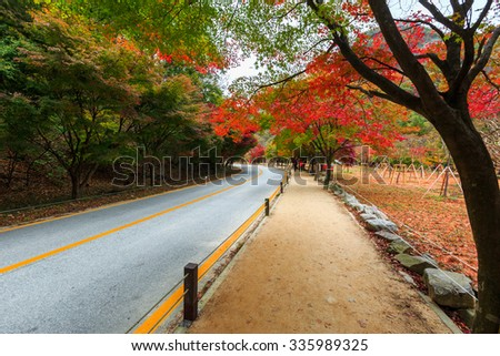 On November 1, 2015 Autumn route in Naejangsan national park, South korea