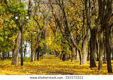 On the alley in the city Park, the yellow leaves - stock photo