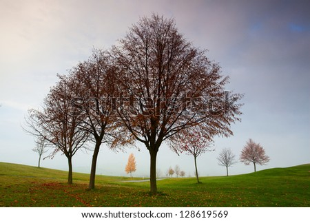On the empty golf course in autumn - stock photo