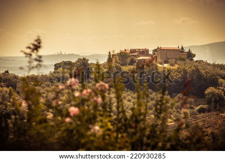 On the hills of Tuscany, in the Chianti region (Italy), with a view of San Gimignano - stock photo