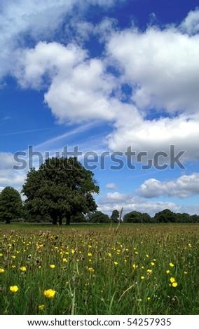 On the Irish countryside. - stock photo