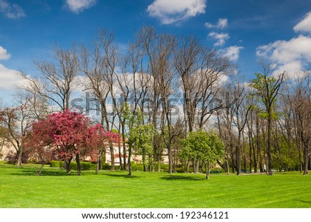 On the Petrin Hill in flowering spring park in Prague