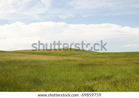 On the Prairie in South Dakota During the Summer. - stock photo