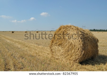 On the sloping field of wheat is a big stack of twisted straw, background sky - stock photo