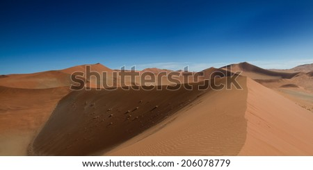 On the top of the sand dune, Sossusvlei, Namibia