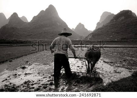 On the way to plough a rice paddy, Guangxi, China.