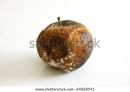 One bad apple against a plain white background - stock photo