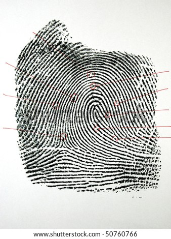 one black fingerprint with outline identification points