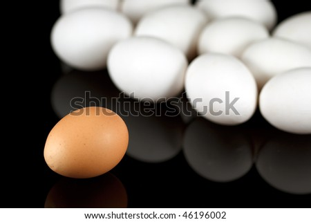 One brown egg and some white chicken eggs on reflecting black background