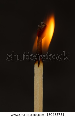 one burning match on dark background