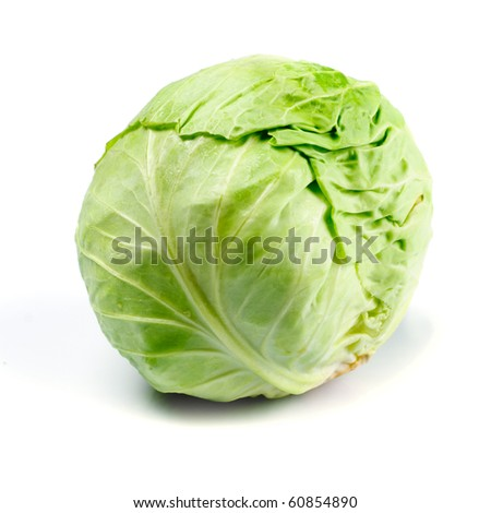 One cabbage yield isolated on white background. - stock photo