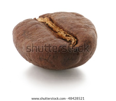 One coffee-bean isolated on white - stock photo