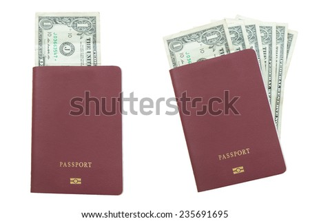 one dollar bills blank passport, isolated on white background - stock photo